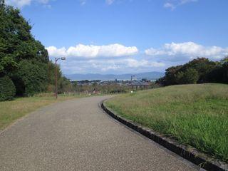 20161102_Umami-Hill-Park_004.jpg